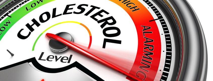 Cholesterin-Lüge