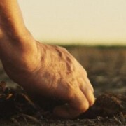 Farmer´s Footprint