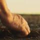 Farmer´s Footprint