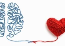 Dankbarkeit, Herz & Hirn