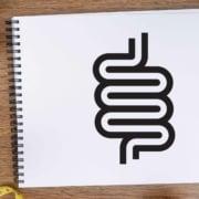 Wie Darmmikrobiom und Krankheiten zusammenhängen